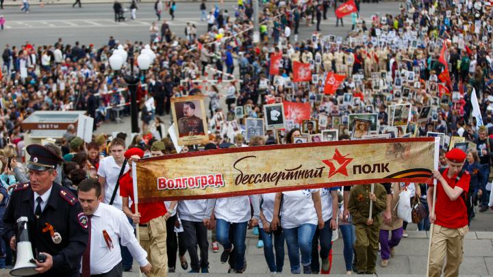 «Вспомните солдата за столом»: в Волгограде из-за коронавируса отменяют массовое шествие «Бессмертного полка»