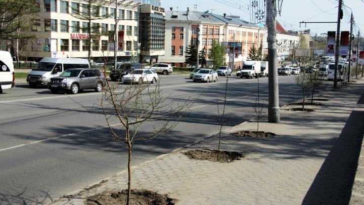 В мэрии объяснили, почему прокуратура нашла дефекты на недавно отремонтированных дорогах