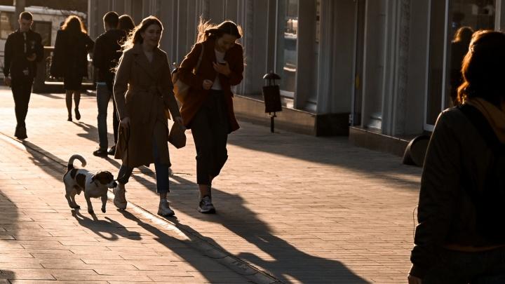 Тени на асфальте: ростовчане высыпали на весенние улицы после дождя — фоторепортаж 161.RU