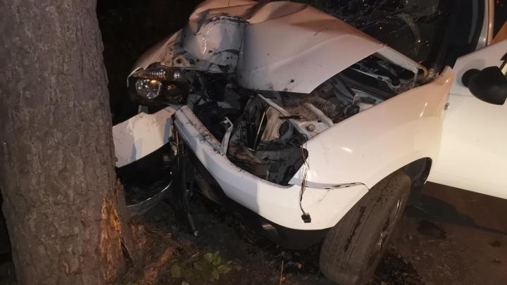 В Кузбассе легковушка влетела в дерево. Пострадали два человека, в том числе ребёнок