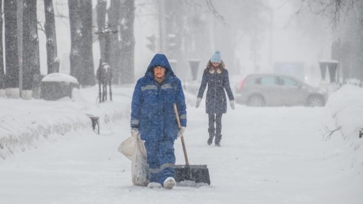 МЧС Прикамья предупреждает о мокром снеге и штормовом ветре