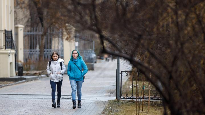 В Волгограде ожидается сильный ветер и +9 ºС