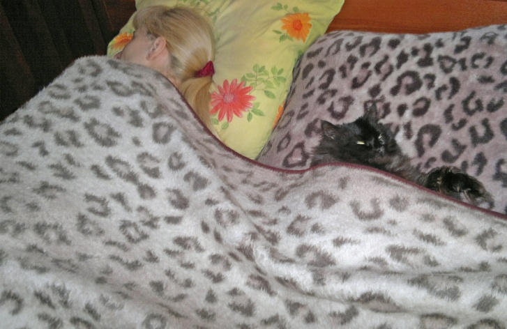«Триста раз ведь говорил, что это моя кровать»