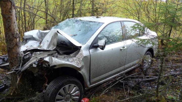 На трассе М-8 легковушка врезалась в самосвал — пострадали три человека, в том числе ребенок