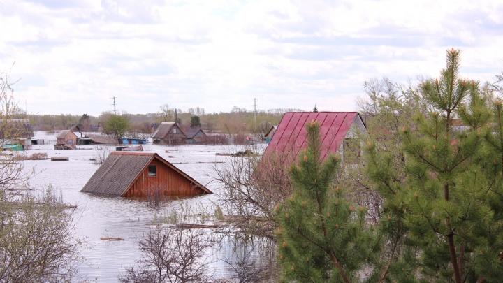 Затопит ли этой весной Тюменскую область? Прогнозы от синоптиков и МЧС