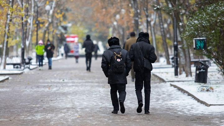 «Складирование снежных масс»: власти рассказали, как будут чистить Ростов этой зимой