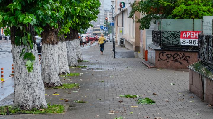 МЧС предупреждает жителей Прикамья о грозе и сильном ветре