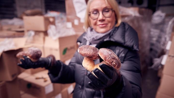 Сквозь закрытые границы: как уралочка кормит Европу отечественными грибами и ягодами