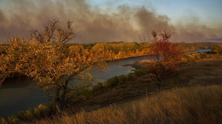 «Площадь горения больше километра»: лесные пожары на севере Волгоградской области угрожают турбазам