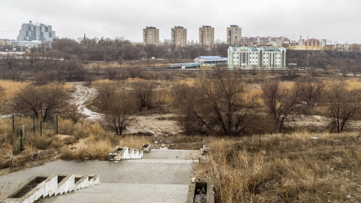 Опыт работы — три собачьих будки и ларек: проектировщик — о приглашенных в Волгоград урбанистах из «Вяза»