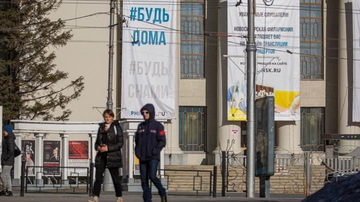 Коронавирус добрался до новых районов Новосибирской области: публикуем обновленную карту