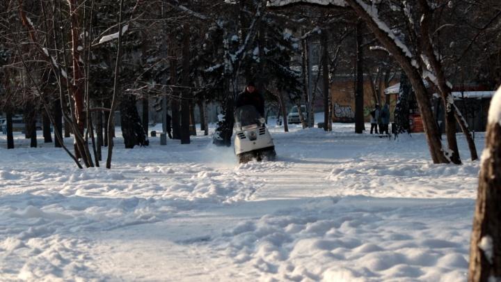 В центре Новосибирска впервые открыли лыжню — где она находится и сколько стоит прокат