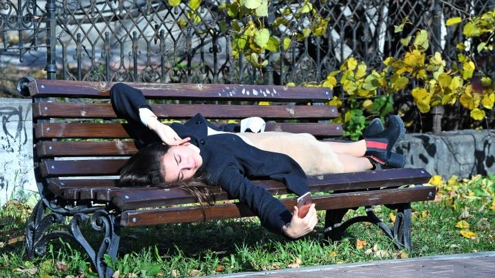 Екатеринбург в центре погодной аномалии: первая неделя ноября будет неожиданно теплой