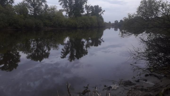 В Кургане в водоёме были найдены человеческие останки