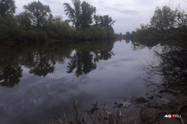 В Кургане в водоёме в Рябково были найдены останки человека