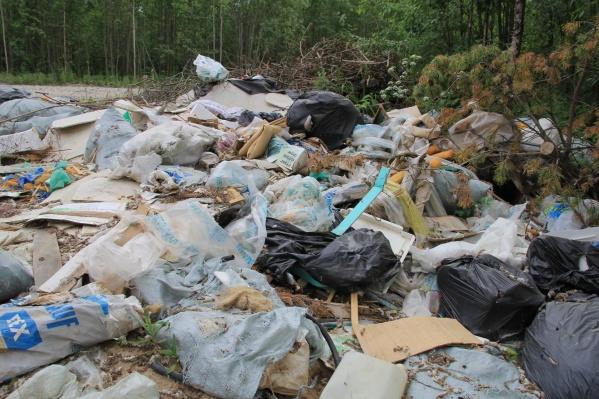За последние два года в Поморье ликвидировали 48 несанкционированных свалок<br>