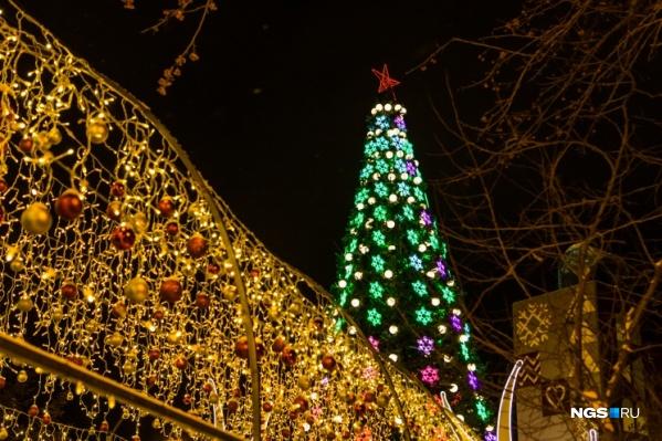Высота главной елки на площади Ленина составит 21 метр