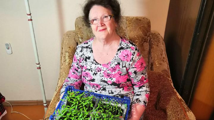 По бабушкиным советам: садовод с 30-летним стажем раскрыла секреты богатого урожая
