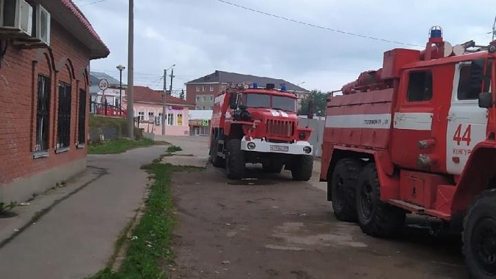 В МЧС рассказали подробности пожара в кунгурском зоомагазине — там погибли несколько животных
