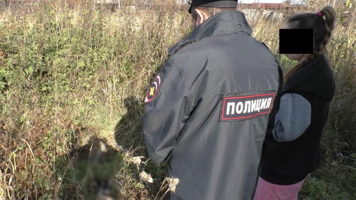 Свердловские полицейские завели уголовное дело на женщину, которая убила свою собаку в порыве гнева