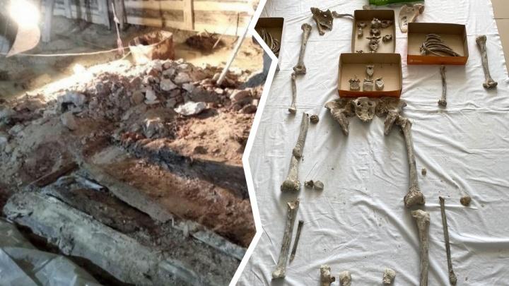 Известны первые результаты экспертизы костей, найденных в Спасской церкви
