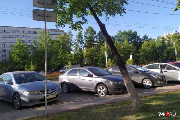Вдоль проспекта Ленина от Лесопарковой до автодороги «Меридиан» уложат свежий газон, погибшую и больную растительность должны заменить