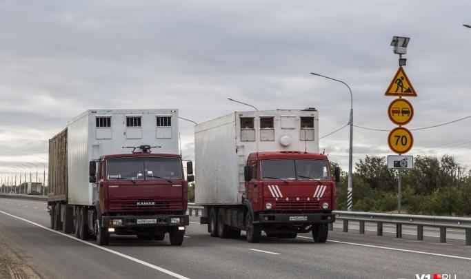 Днем спать, ночью ехать: дороги Волгоградской области в жару закроют для тяжелых грузовиков