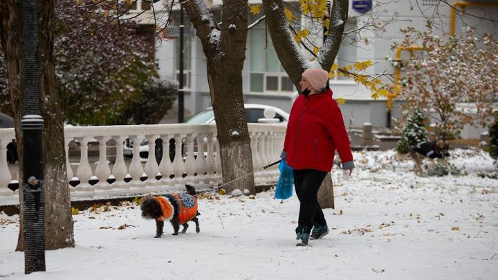 В Ростове выпал первый снег. Фоторепортаж 161.RU c улиц города