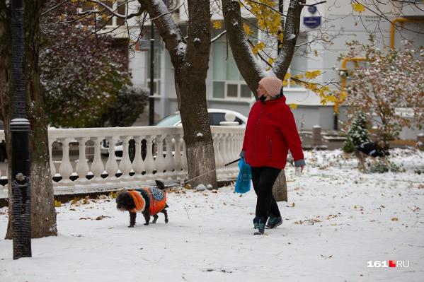 Много снега было на газонах. На тротуаре он сразу таял