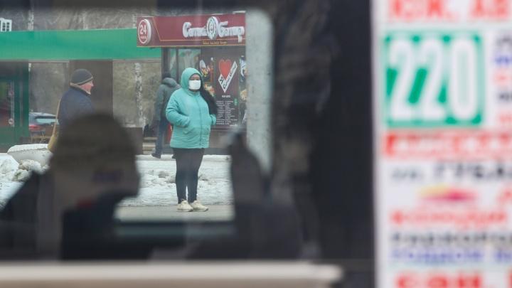 Власти Башкирии рассказали, сколько человек не соблюдают режим самоизоляции