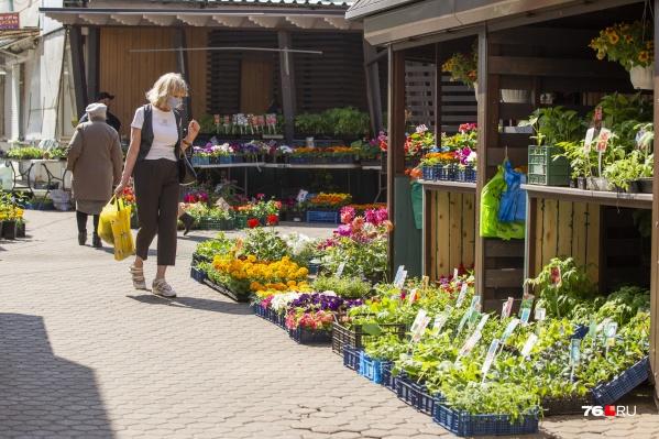 Торговля в Ярославской области уже частично восстановлена