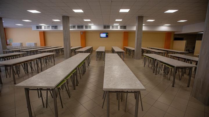 Мэрия обязала новосибирские школы улучшить систему питания детей