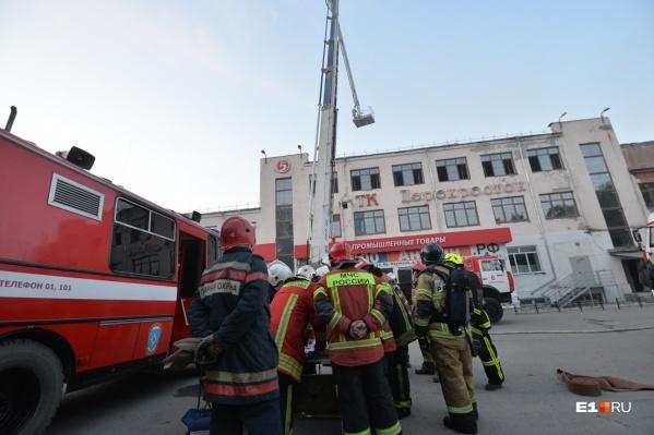 Площадь возгорания составила 700 квадратных метров