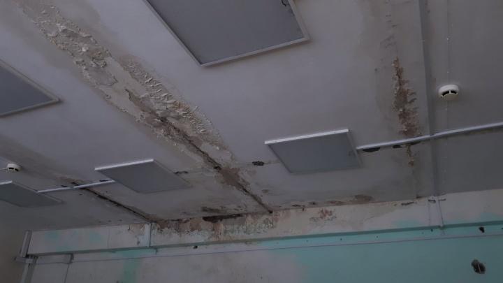 «Садик ремонтировали, а крыша бежит»: в Прикамье детсад закрыли на полгода сразу после ремонта
