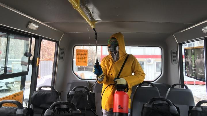 Коронавирусу — бой: в Самаре маршрутки начали мыть с хлоркой