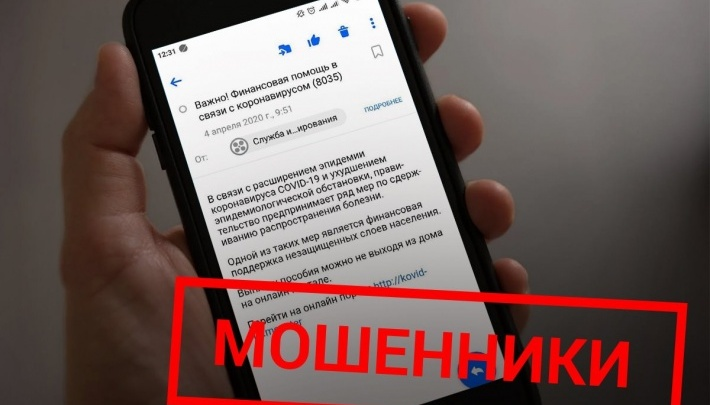 Удаленка только помогла: в Екатеринбурге резко выросло число жалоб на мошенников