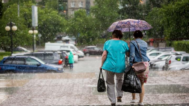 Будет прохладно: кемеровский Гидрометцентр рассказал о погоде на неделе