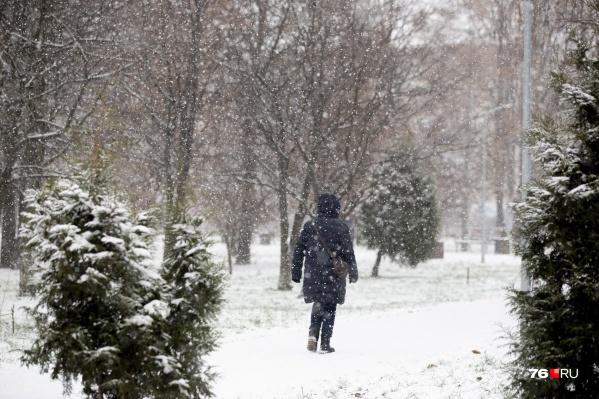 До календарной зимы осталось несколько дней