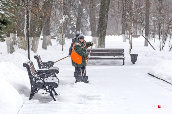 Судя по прогнозу, в Ярославской области сугробы начнут появляться только в январе
