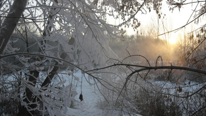 В Курганской области ожидаются морозы