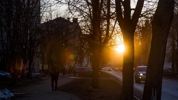 Грозы и температурные качели: синоптики рассказали, какой будет погода в Ярославле в апреле