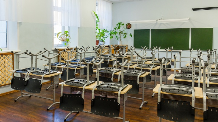 В Перми пройдет горячая линия по вопросам дистанционного обучения школьников