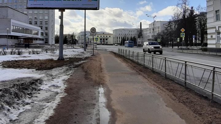 На 29.RU удалены фотографии, на которых якобы показана проверка въезжающих в Санкт-Петербург граждан
