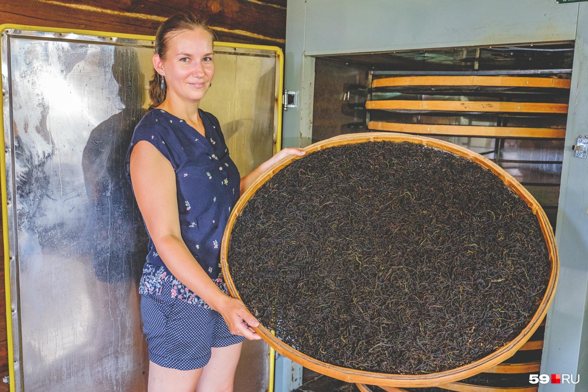 Евгения демонстрирует поддон с иван-чаем, который только-только достали из печи и сейчас отправят остывать