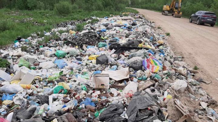 Дорожники в Няндомском районе пожаловались, что им приходится заниматься вывозом незаконных свалок