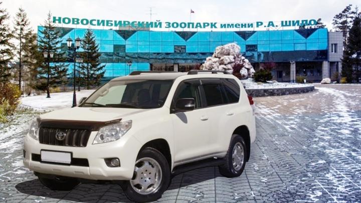 Сибиряки угнали «Ленд-Крузер» в Омске и повезли девушку в новосибирский зоопарк