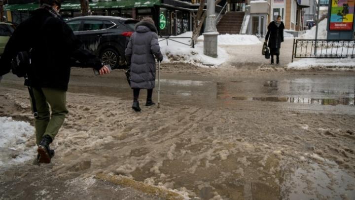 Мокрый снег и гололёд: Новосибирскую область ждёт температура до +5 градусов