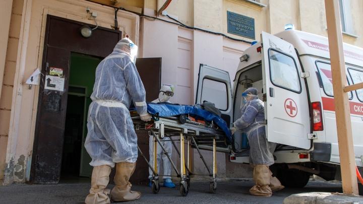 Еще шесть жертв COVID-19 подтверждено в Волгоградской области