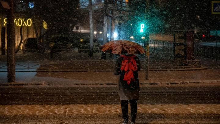 В Новосибирск пришла зима — 15 фото с заснеженных улиц города
