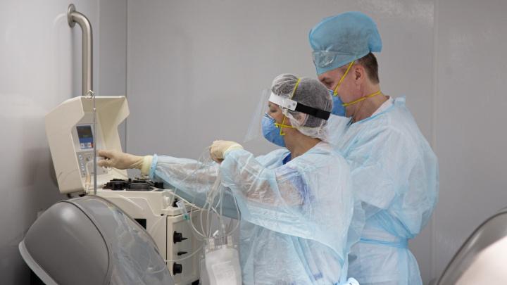 В Зауралье за сутки подтвердили 17 случаев заболевания коронавирусной инфекцией